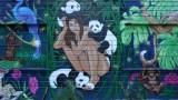 Amandalynn Pandas