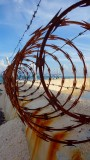 Rusty Beach Barbed Wire
