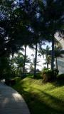 Mayan Palace Riviera Maya Walkway