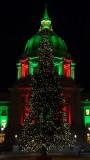 Civic Center Christmas Tree