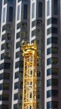 Big Yellow Crane