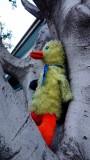 Big Bird in a Tree