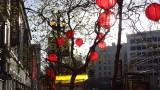 Westfield San Francisco Centre Lunar New Year Lanterns