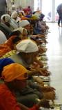 Gurudwara Bangla Sahib Lunch