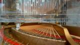 Kochi Marriott Hotel Glass Piano