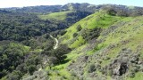 Sunol Regional Wilderness in Spring