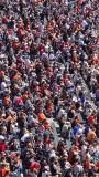 SF Giants Fans