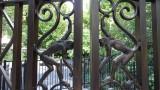 Central Park Monkey Gate