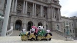 The Pandafords visit The Library of Congress