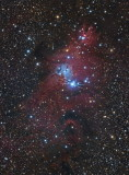 Christmas Tree cluster and Cone Nebula
