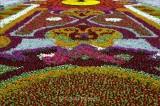 Taif Flower show.jpg