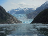 Alaska Land-Sea Tour - July 2014