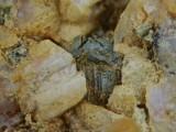 Reticulated sagenite (centre) above pyrite with strange dissolution channels and K-feldspar. Shap Granite Quarry.