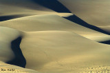 Alamoosa Wildlife Refuge and The Great Sand Dunes National Park - 2008