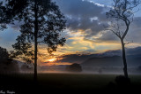 Early in Cades Cove
