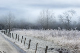 Memories of a Winter Past