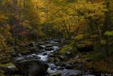 Midle Prong - Autumn II
