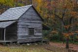 The Dogwood at The Ogle Place