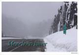 Meech in Winter