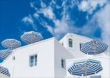 05 White & Blue.jpg
