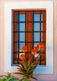 07 Window Dressing.jpg