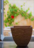 12 Lonely Heart.jpg