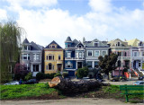 An El Niño Winter and the Other Painted Ladies of San Francisco