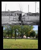 Parc Laurier 1960 - 2013