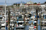 Crescent Harbor, another perspective