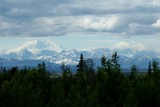 A view of Mt. Mckinley from Talkeetna