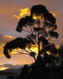 Sunset in Hobart, Tasmania