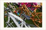 Vélos artistiques
