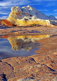 Striped Sentinal reflection, White Pocket, Vermilion Cliffs National Monument, AZ AZ