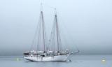 Sailboat in Bar Harbor, ME