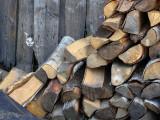 Catwood