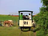 Horse tramway