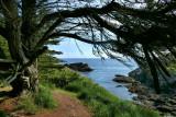 Sentier côtier