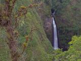 San Fernando Waterfall - 2013