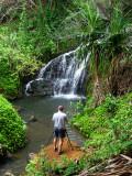 Waterfall Near Queens Bath