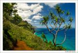 Kalalau Trail, Napali Coast, Kauai, 2013