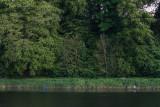 a58-tweedfishers.jpg