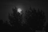 Moonrise in Pennsylvania