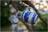 Cups Hanging in Trees