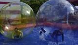 HOLLE BELGIUM  KIDS HAVING A { BALL}