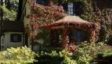 Autumn colors  on Main street Bar Harbor Maine USA