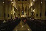 Saint Patrick Cathederal
