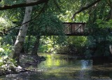 The Creek - nice on a hot day!