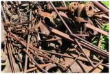 Cass lumber detritus