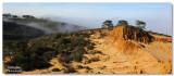 Torrey Pines Broken Hill