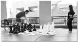 Chess @ Horton Plaza